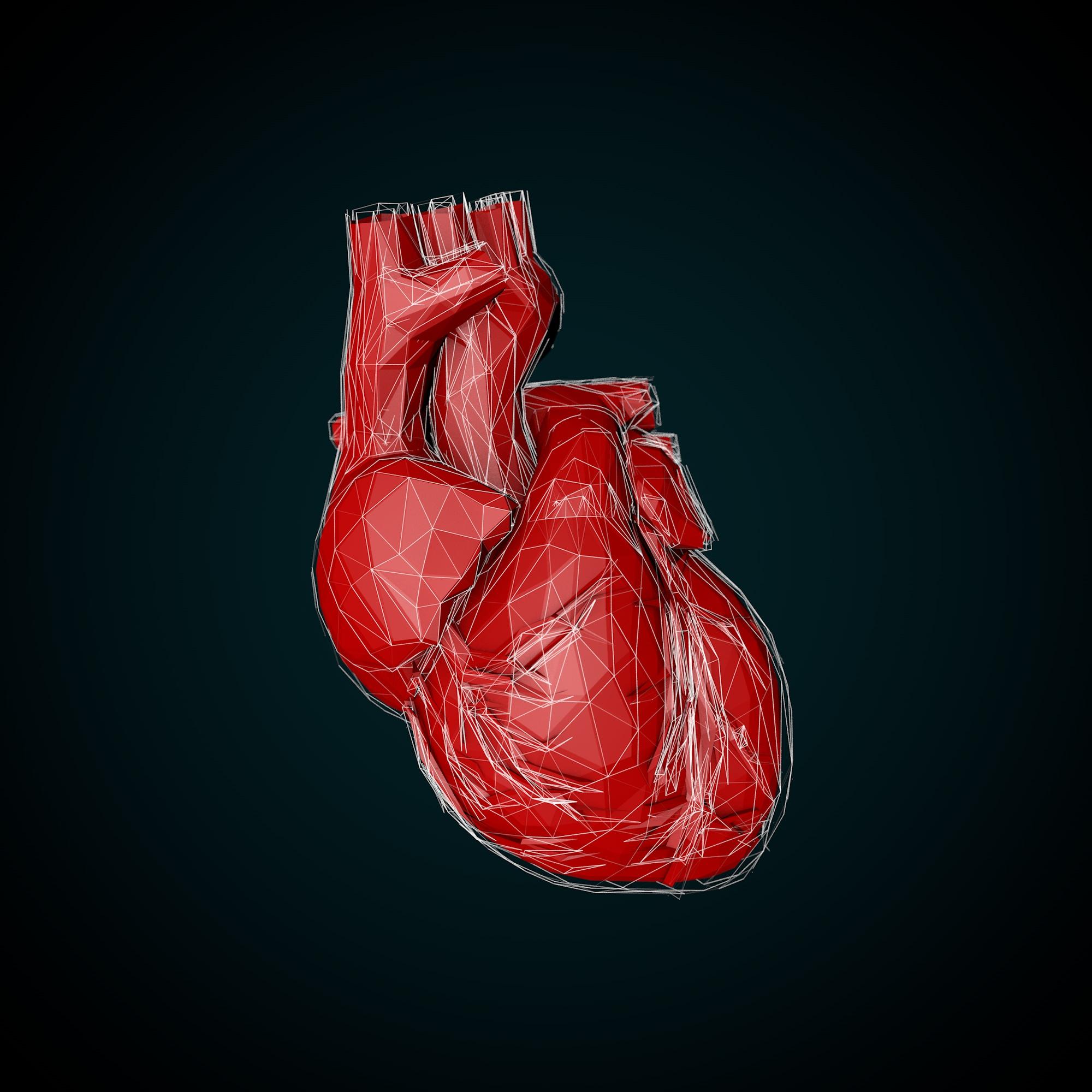 Heart 3D Polygon