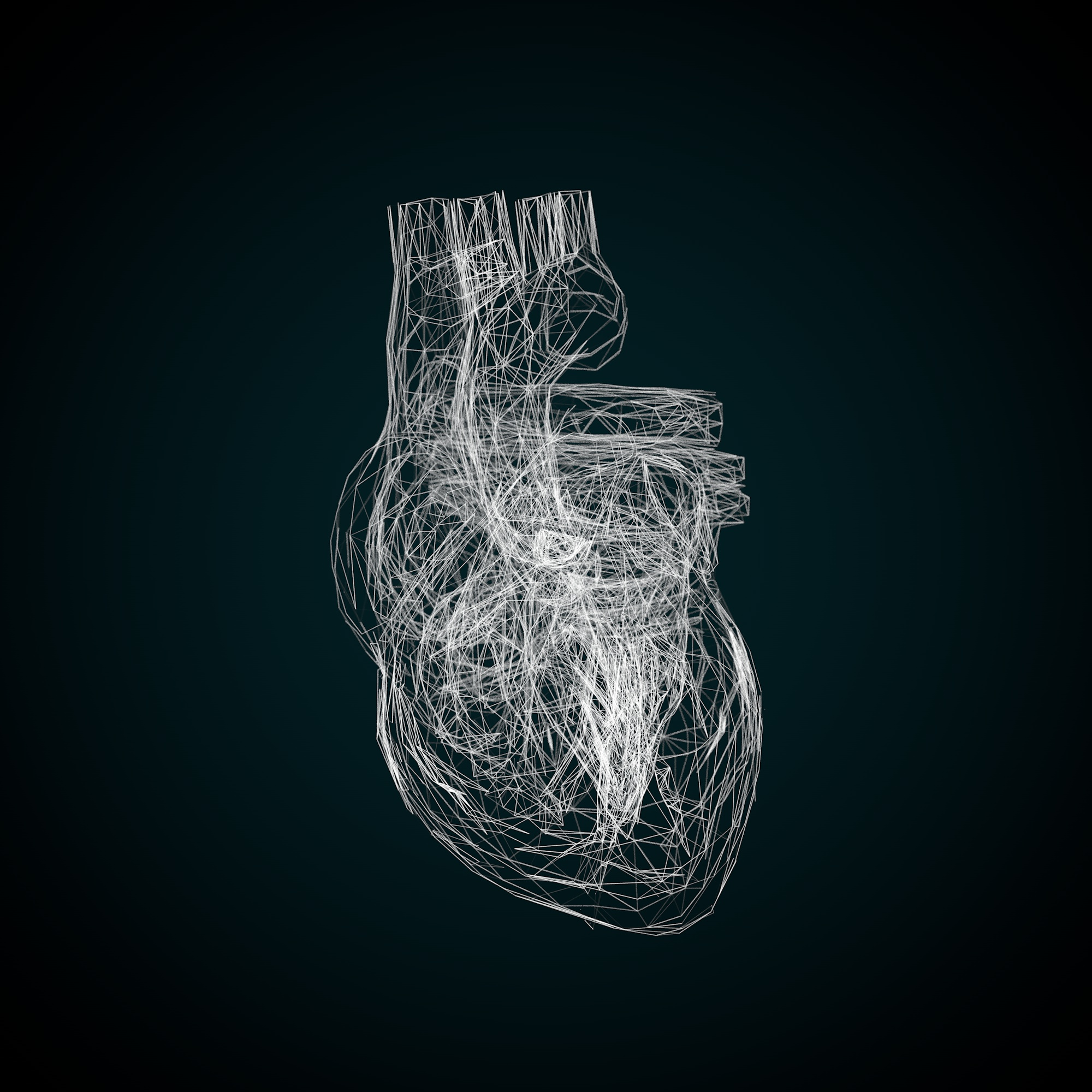 Heart 3D Wireframe